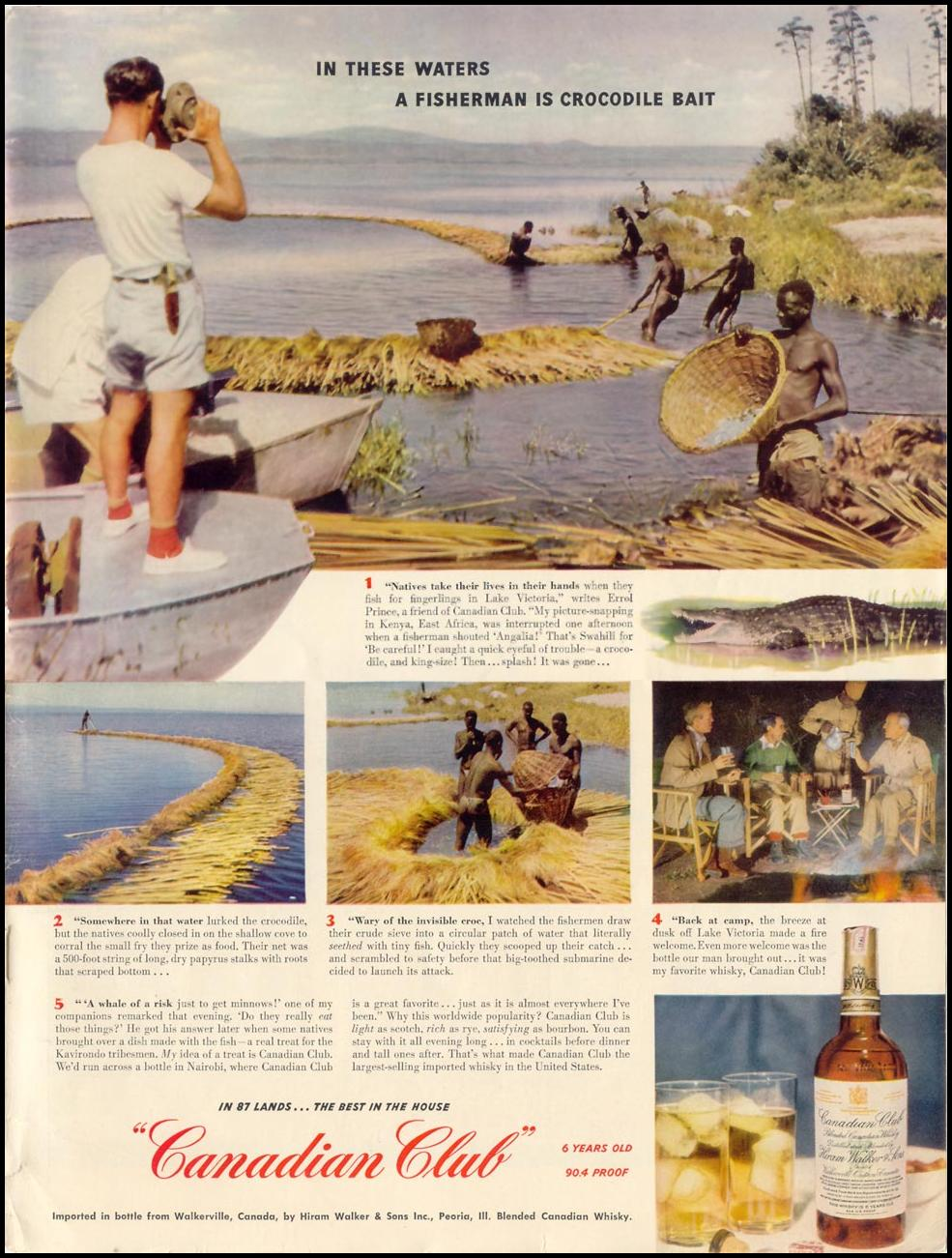 CANADIAN CLUB WHISKEY LIFE 06/05/1950 INSIDE BACK