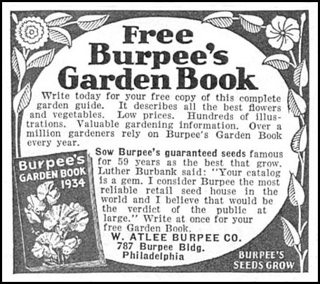 BURPEE'S SEEDS GOOD HOUSEKEEPING 12/01/1933 p. 172