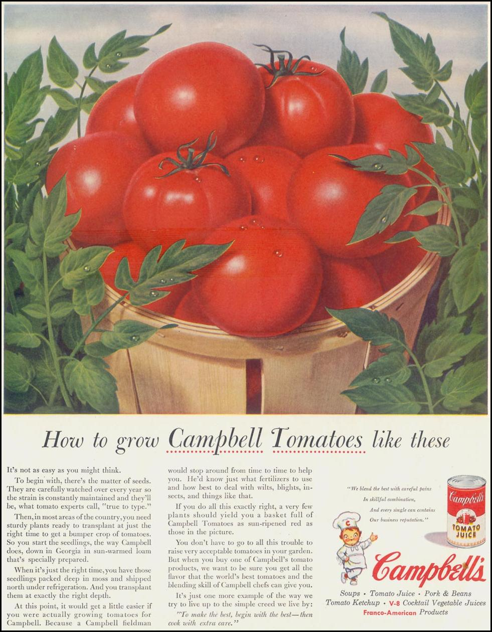 CAMPBELL'S TOMATO SOUP SATURDAY EVENING POST 06/04/1955