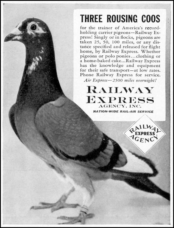 NATION-WIDE RAIL-AIR SERVICE LIFE 09/27/1937 p. 121
