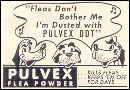 PULVEX FLEA POWDER GOOD HOUSEKEEPING 07/01/1949 p. 194