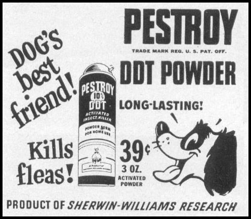 PESTROY DDT POWDER WOMAN'S DAY 05/01/1947 p. 113