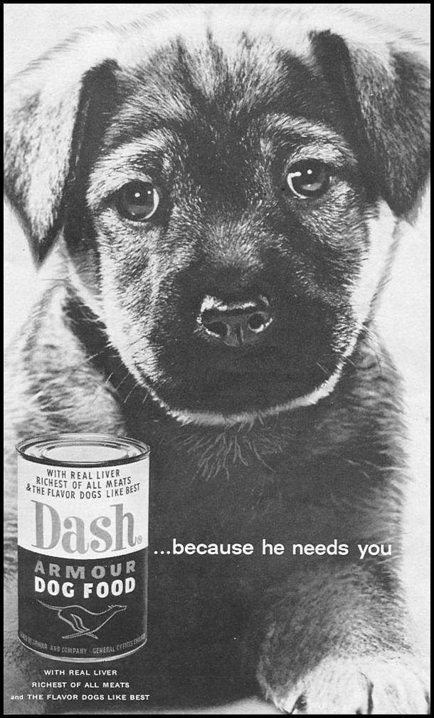 DASH DOG FOOD WOMAN'S DAY 09/01/1955 p. 121