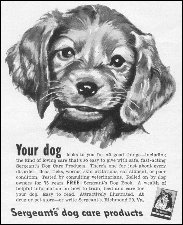 SERGEANT'S DOG CARE PRODUCTS LIFE 06/05/1950 p. 100