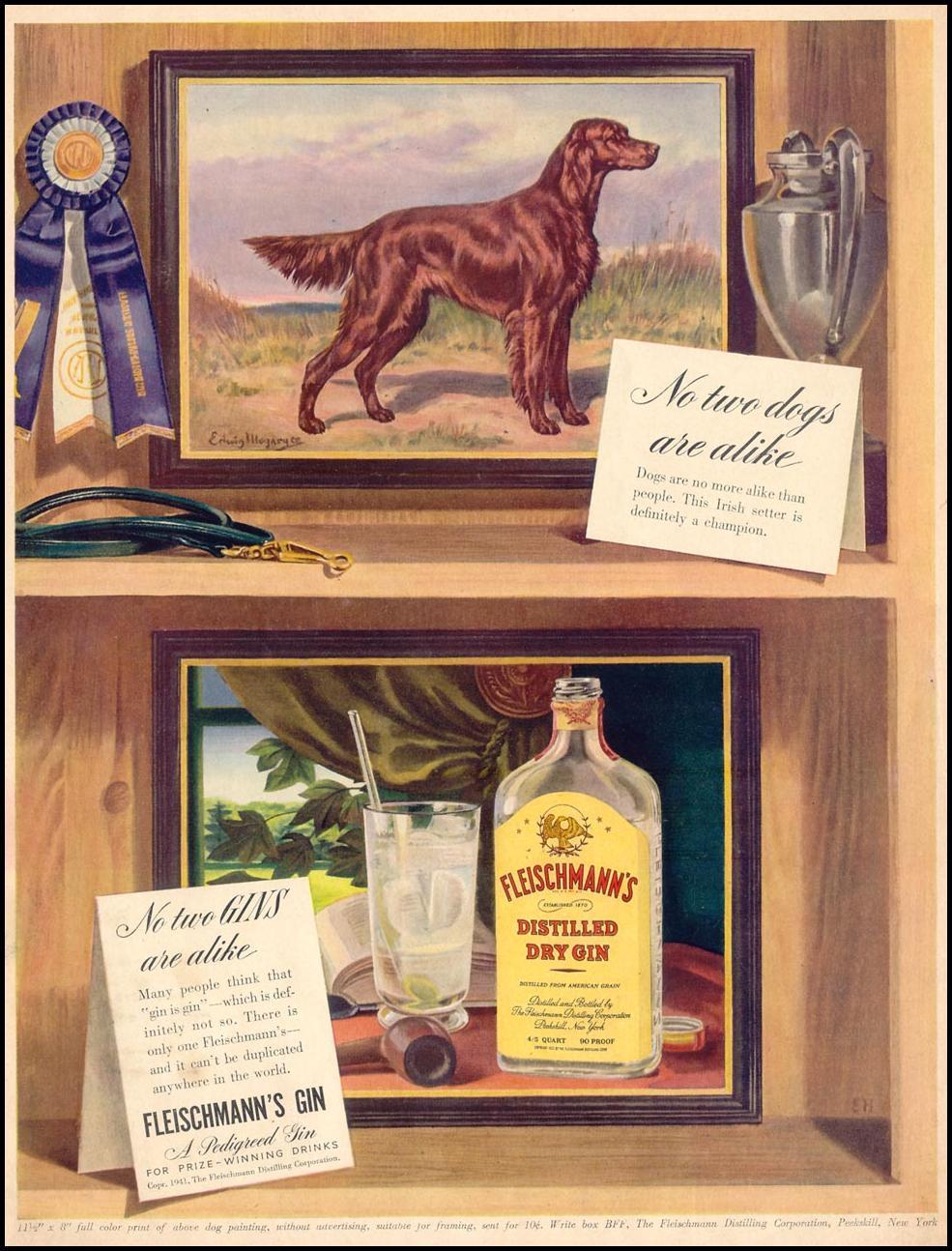 FLEISCHMANN'S DISTILLED DRY GIN LIFE 06/23/1941
