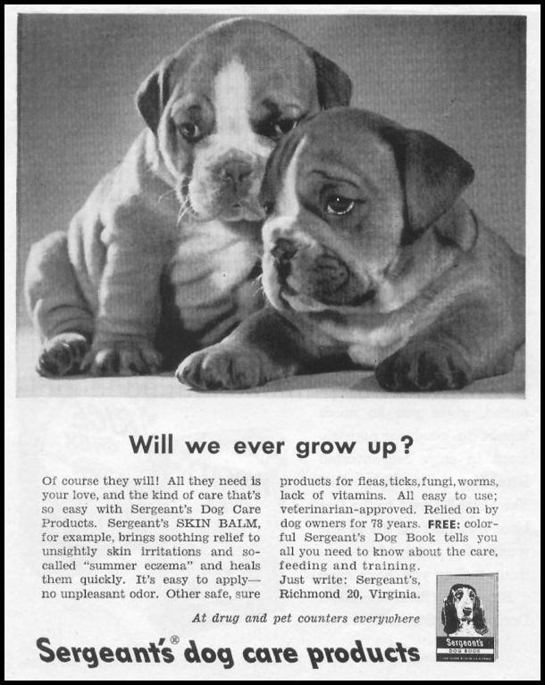 SERGEANT'S DOG CARE PRODUCTS LIFE 07/12/1954 p. 106