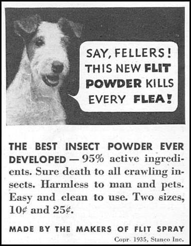 FLIT FLEA POWDER GOOD HOUSEKEEPING 06/01/1935 p. 214