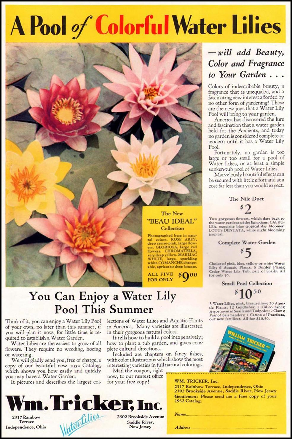 WATER LILIES BETTER HOMES AND GARDENS 03/01/1932 p. 38