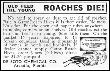GATOR ROACH HIVES GOOD HOUSEKEEPING 04/01/1936 p. 246
