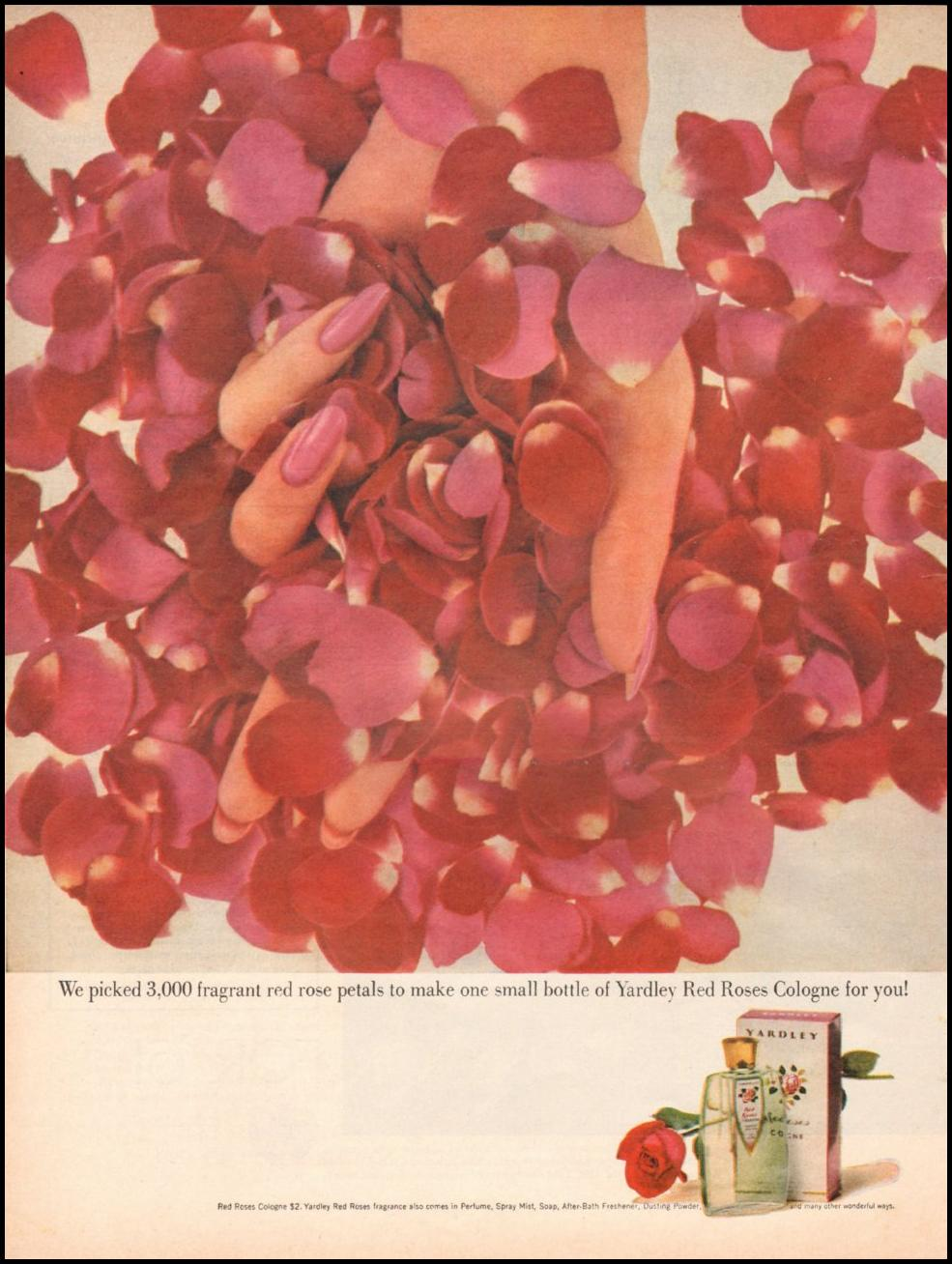 YARDLEY RED ROSES COLOGNE LIFE 05/05/1961