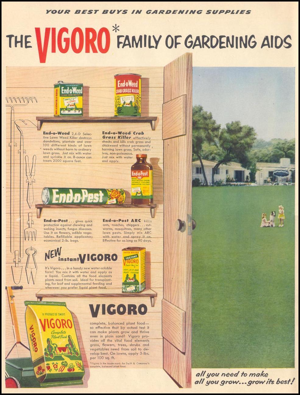 VIGORO GARDENING AIDS LIFE 04/13/1953 p. 84