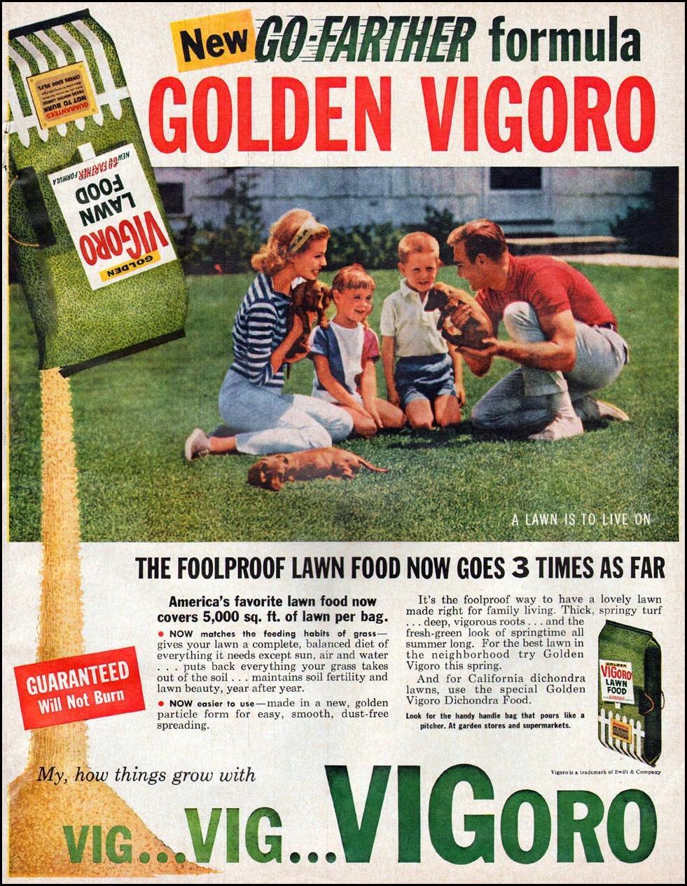 VIGORO LAWN FOOD BETTER HOMES AND GARDENS 03/01/1960 p. 181